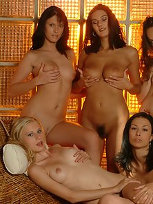 Five Sexy Honeys Stripping
