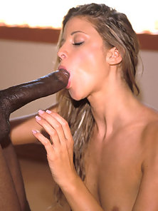 Hot sweaty blonde babe fucking a big black dick in these sex pictures