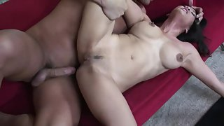Wiener Sucking Brunette on a Couch Got Nailed reasonably hard